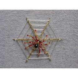 Pavouk na pavučině menší