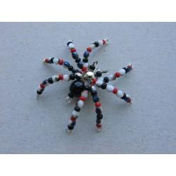 pavouček pro štěstí-...